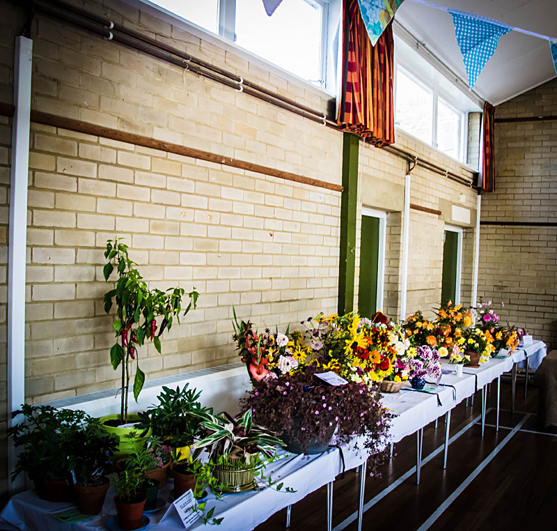 Horticultural show at Biddenden Village Halls
